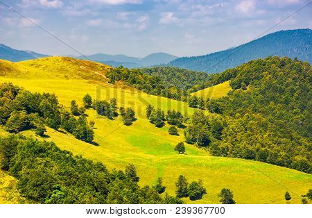 Beautiful Landscape Of Krasna Mountain Ridge. Grassy Slopes And Forested Hill Under The Blue Summer