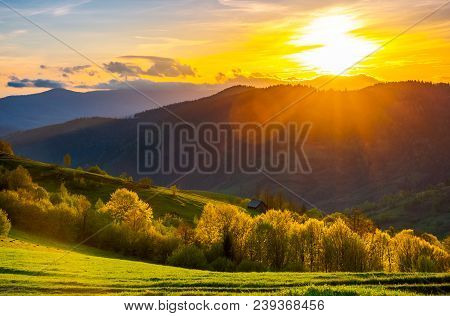Great Sunset In Carpathian Mountains. Beautiful Springtime Landscape. Forest On Grassy Hills Back Li