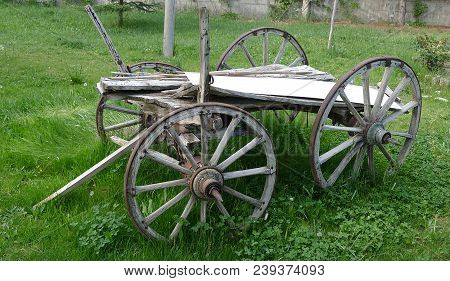 Horse Carriage, Turkish Classical Horse Carriage View,