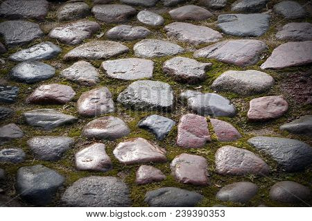 Stone Pavement Texture. Granite Cobble Stoned Pavement Green Background. Abstract Background Of Old