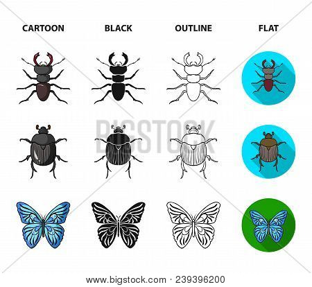 Wrecker, Parasite, Nature, Butterfly .insects Set Collection Icons In Cartoon, Black, Outline, Flat