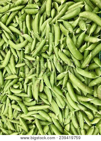 Snap Peas In A Large Pile, Background Of Snap Peas