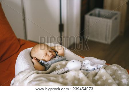 Healthy Daytime Sleep For The Newborn. The Baby Is Sleeping In The Orthopedic Baby Cocoon On The Bed