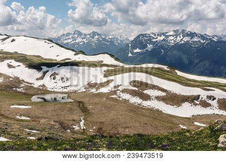 Alpine Meadows And Flower Glades Against The Background Of Snow-capped Mountains. Idyllic Scene Of H