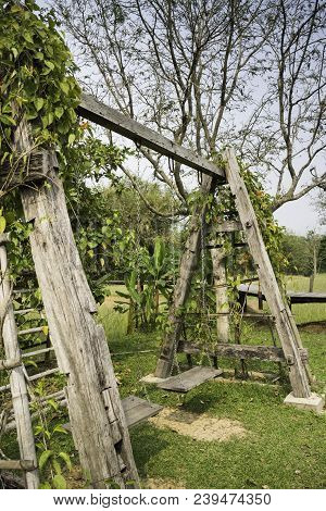 Outdoor Wooden Swing In Field, Stock Photo