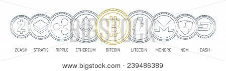 Banner With Cryptocurrency Coins Drawn With Contour Lines On White Background. Digital Currencies Lo