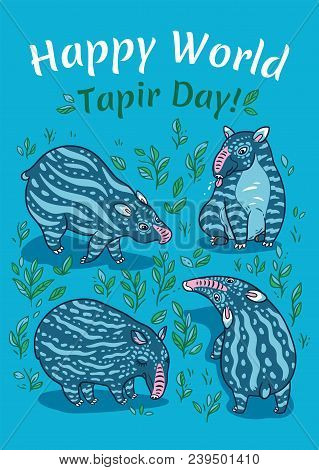 Tapir Images, Illustrations & Vectors (Free) - Bigstock