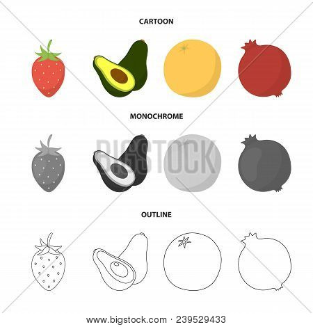 Strawberry, Berry, Avocado, Orange, Pomegranate.fruits Set Collection Icons In Cartoon, Outline, Mon