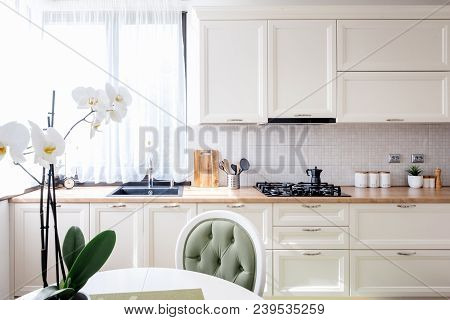 Contemporary Kitchen With Modern Furniture And Flower. Interior Design Modern