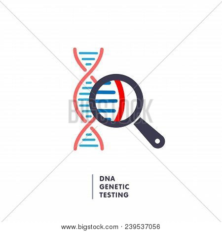 Dna, Genetics Testing Icon. Dna Chain In Magnifying Glass Sign. Genetic Engineering, Cloning, Patern