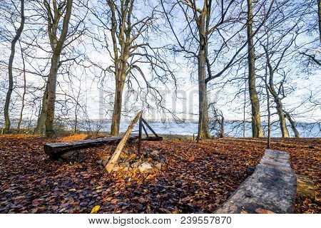 Camp Site With A Fireplace And A Bench Near The Sea In A Forest In The Fall With Leaves On The Groun