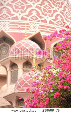 Blooming bougainvillea and pink mosque (Masjid Jamek sultan Abdul Samad), Kuala Lumpur, Malaysia. Focus on flowers