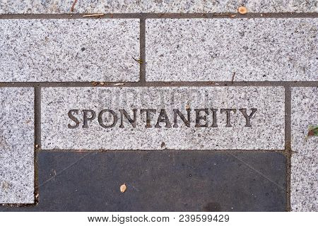 The Word Spontaneity On A Motivational Brick Sidewalk Made Of Concrete And Mortar.