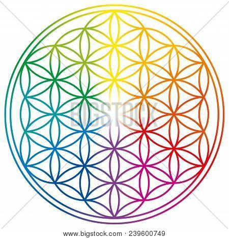 Flower Of Life In Rainbow Colors. Geometrical Figure, Spiritual Symbol, Sacred Geometry. Overlapping