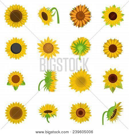 Sunflower Blossom Icons Set. Flat Illustration Of 16 Sunflower Blossom Vector Icons Isolated On Whit