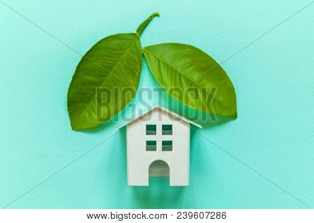 Miniature Toy Model House With Green Leaves On Blue Pastel Colourful Trendy Backgdrop. Eco Village,