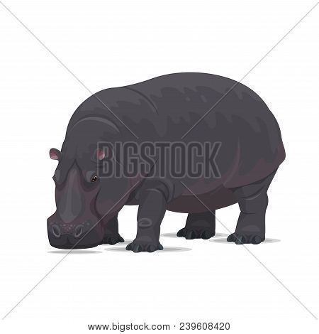 Hippopotamus Animal Icon. Vector Isolated Zoology Flat Design Of African Wild Hippo For Wildlife Fau