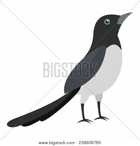 Magpie Thief Icon. Flat Illustration Of Magpie Thief Vector Icon For Web