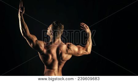 Bodybuilder Man With Muscular Torso Back And Hands With Biceps, Triceps Posing On Black Background.