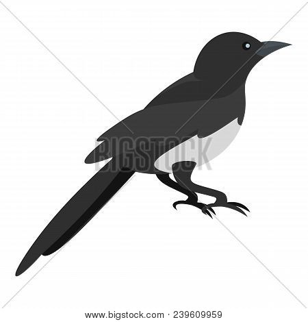 Domestic Magpie Icon. Flat Illustration Of Domestic Magpie Vector Icon For Web