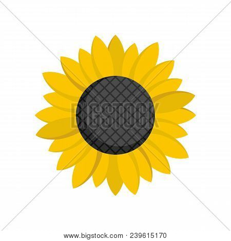 Sunflower Seed Icon. Flat Illustration Of Sunflower Seed Vector Icon For Web