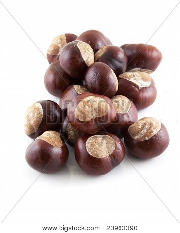Group Of Chestnuts