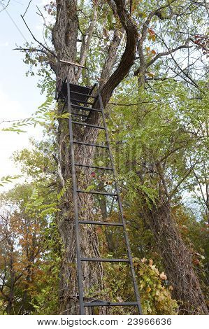 tree stand for hunting