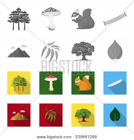 Mountain, Cloud, Tree, Branch, Leaf.forest Set Collection Icons In Monochrome, Flat Style Vector Sym