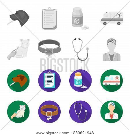 Collar, Bone, Cat, Haircut .vet Clinic Set Collection Icons In Monochrome, Flat Style Vector Symbol
