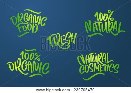 Lettering Set For Natural Products In Green Colors. Handwritten Logo Fresh, Organic Food, 100% Natur