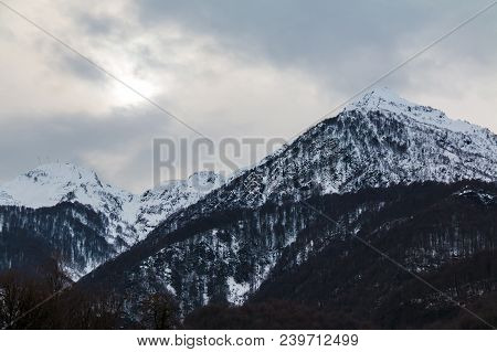 Gloomy Landscape With Mountains Covered With Snow And Bare Trees In Winter Day, Krasnaya Polyana, So