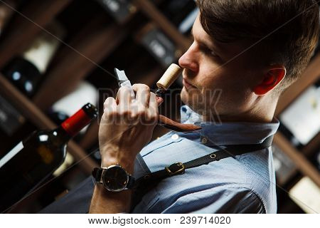 Sommelier Smelling Flavor Of Cork From Red Wine On Background Of Shelves With Bottles In Cellar. Mal