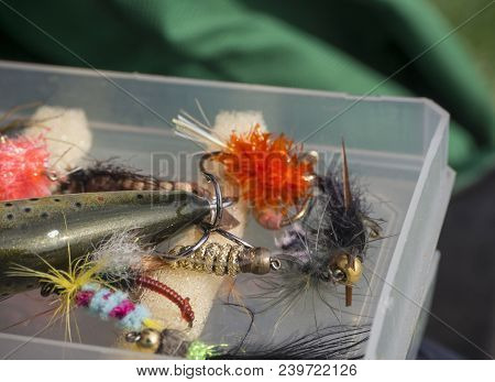 Close Up Macro Of Plastic Box With Colorful Fishing Flies Lure Baits, Bee, Fly And Wobler For Anglin