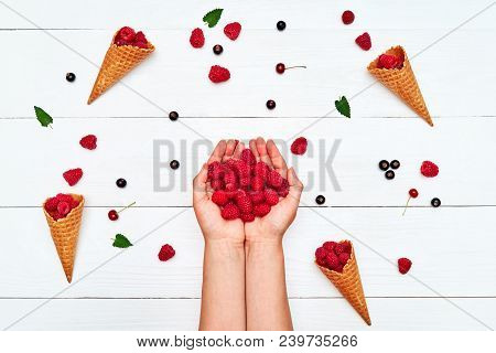 Closeup Of Woman Holding In Hands Freshly Picked Raspberries On White Wooden Table, Free Space. Ripe