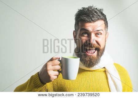 Smiling And Happy Handsome Bearded Man Drinking Coffee, Tea, Water, With Mug. Smiling Man In Sweater