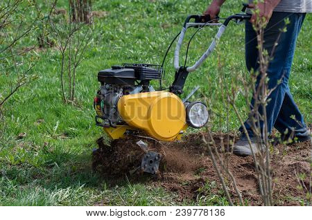 Soil Cultivation. The Cultivator Loosens The Ground. The Farmer Works With A Motor-block. Agricultur
