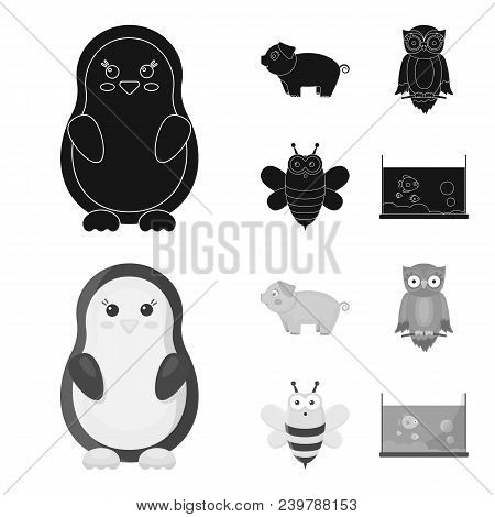 An Unrealistic Black, Monochrom Animal Icons In Set Collection For Design. Toy Animals Vector Symbol