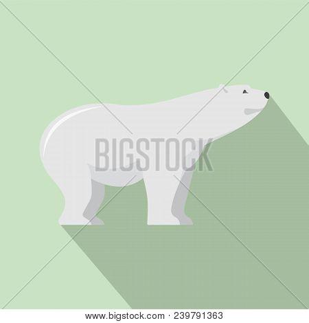 Watching Of Polar Bear Icon. Flat Illustration Of Watching Of Polar Bear Vector Icon For Web Design
