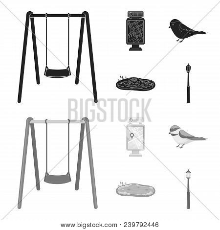 Territory Plan, Bird, Lake, Lighting Pole. Park Set Collection Icons In Black, Monochrom Style Vecto