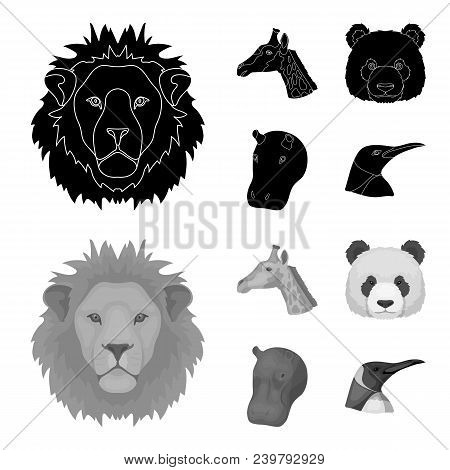 Panda, Giraffe, Hippopotamus, Penguin, Realistic Animals Set Collection Icons In Black, Monochrom St