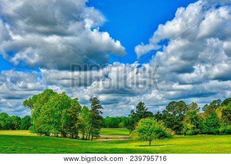A High Definition Landscape Of A Green Meadow Full Of Grass, Trees, And A Pond Under A Cloudy Blue S
