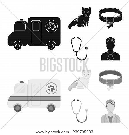 Collar, Bone, Cat, Haircut .vet Clinic Set Collection Icons In Black, Monochrom Style Vector Symbol