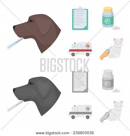 Hospital, Veterinarian, Dog, Thermometer .vet Clinic Set Collection Icons In Cartoon, Monochrome Sty