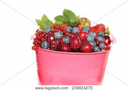 Berry Season.bright Pink Bucket With Berries Of Strawberries, Blueberries, Cherries, Red Currants Is