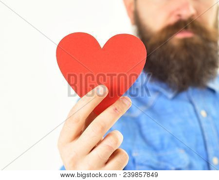 Card In Heart Shape In Hand Of Bearded Hipster On White Background. Man With Beard Holds Red Paper H