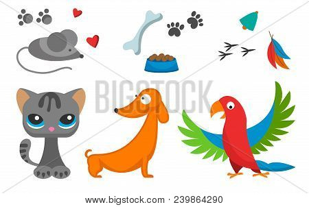 Cat And Mouse Cute Kitty Dog Parrot Pet Cartoon Cute Animal Character Illustration. Mammal Human Fri