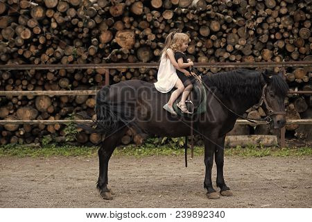 Girls Ride On Horse On Summer Day. Equine Therapy, Recreation Concept. Sport, Activity, Entertainmen