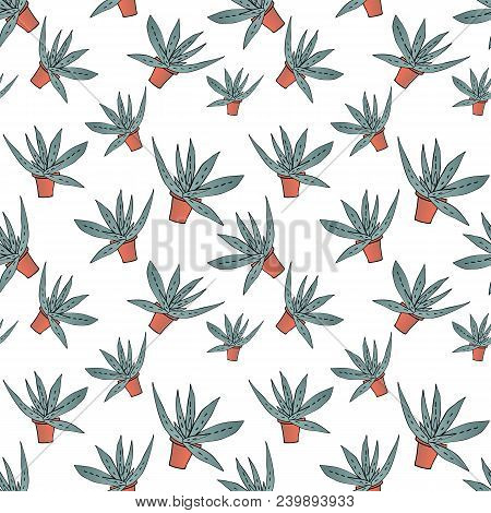 Home Green Aloe In Brown Pot In Gradient Colors, Seamless Pattern Isolated On White Background, Stoc