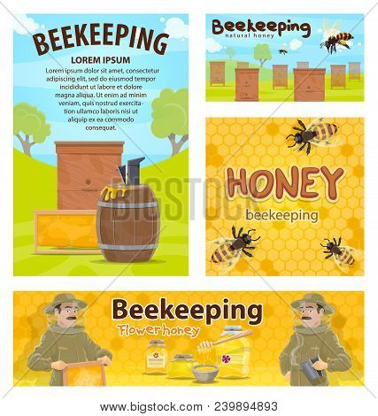 Beekeeping Posters Flat Design Of Apiary And Beekeeper. Man With Honeycomb Taking Honey From Beehive