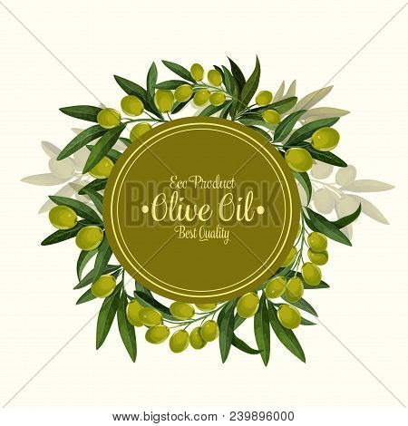 Eco Product Olives Poster For Olive Oil Organic Natural Product. Vector Design Of Green Olive Fruits